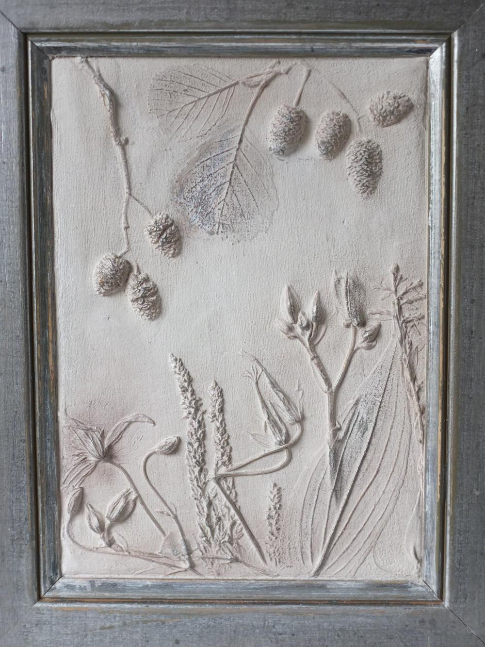 Krötenlilie Erle